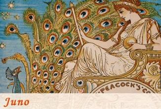 Goddess Juno Peacock