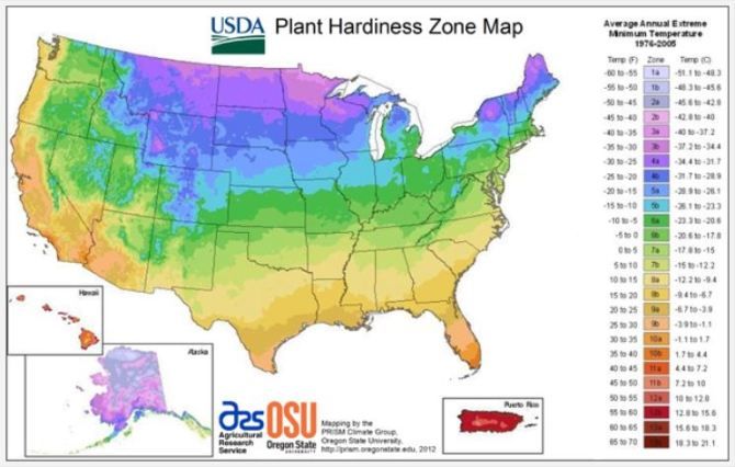 Plant Hardiness Zones US DEPARTMENT OF AGRICULTURE