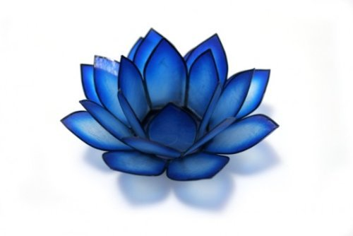 Lotus Tea Light Blue Lagoon Other Colors Available